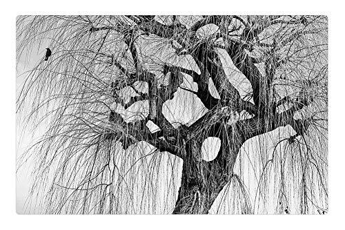 (Indoor Floor Rug/Mat (23.6 x 15.7 Inch) - Tree Willow Winter Crow Bird Black and White Mood)
