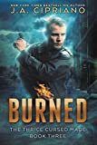 download ebook burned: an urban fantasy novel (the thrice cursed mage book 3) pdf epub