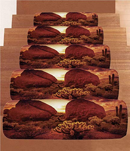 Saguaro Cactus Decor Coral Fleece Stair Treads,Stair Tread Mats,Dramatic Desert Scenery Like Burnt by Sun Near Scottsdale Hot Rocks Serene Western Image,(Set of 5) 8.6