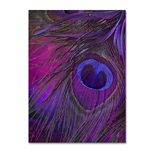 Peacock Candy IV by Color Bakery, 18x24-Inch Canvas Wall Art (Art Com Feather Print)