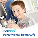 ICEPURE DA29-00020B Replacement Samsung