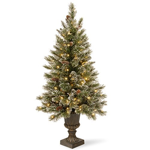 National Tree 5 Foot Glittery Bristle Pine Entrance Tree with Glittered Branches, White Tipped Cones and 150 Clear Lights in Decorative Urn (GB3-306-50) (Lights Clear 150 Tips)