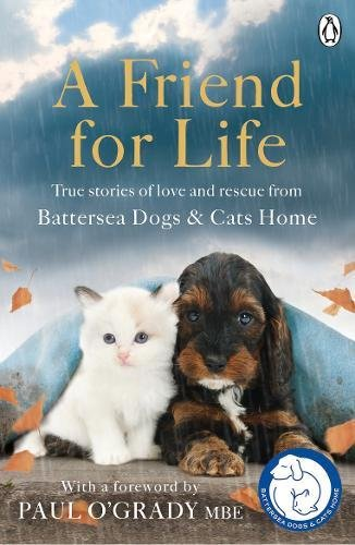 Read Online A Friend for Life pdf