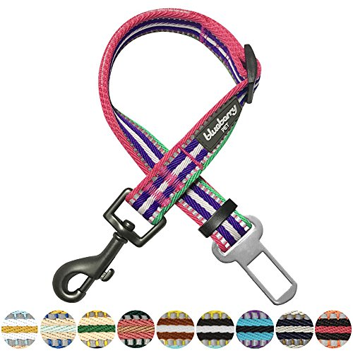 Blueberry Pet 3M Reflective Multi-Colored Stripe Adjustable Dog Seat Belt Tether for Dogs Cats, Pink, Emerald and Orchid, Durable Safety Car Vehicle Seatbelts Leads Use with Harness by Blueberry Pet