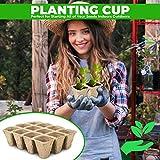 Seed Starter Tray Kit Pots- Organic Biodegradable