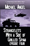 Strangelets with a Side of Grilled Spam, Michael Angel, 1490990666
