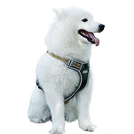 Zorara Arnés para Perros, arnés de Seguridad para Perros ...