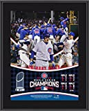 "Anthony Rizzo Chicago Cubs 2016 MLB World Series Champions 10.5"" x 13"" Sublimated Plaque - Fanatics Authentic Certified"