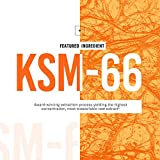 KSM-66 Ashwagandha Root Powder Extract, High