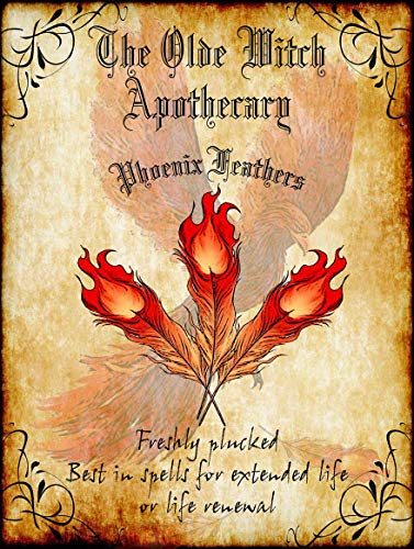 American Collectibles The Olde Witch Apothecary Phoenix Feathers Spell Ingredients Halloween Metal Sign -