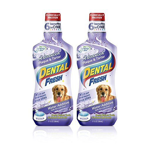 Dental Fresh Advanced Plaque and Tartar-17 Oz [2-Pack] by SynergyLabs