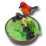Dress Up Large Bathroom Mirror Bovillo Children's electric toy Acoustic Induction Cage Bird Toy Home Decoration