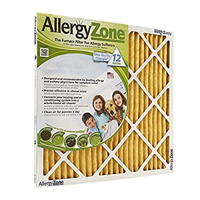 AllergyZone AZ20251 Air Filter for Allergy Sufferers, 20 x 25 x 1""