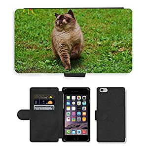 GoGoMobile Flip PU Leather Wallet Case with Credit Card Slots // M00118152 Cat British Shorthair Play Mieze // Apple iPhone 6 4.7""