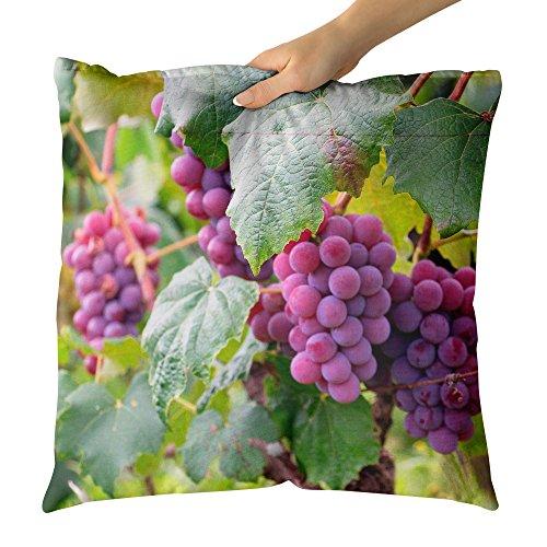 Westlake Art Grape Grapevine - Decorative Throw Pillow Cushion - Picture Photography Artwork Home Decor Living Room - 14x14 (Jackson Estate Wines)