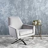 Aegis Grey New Velvet Swivel Club Chair