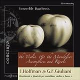 Violin & the Mandolin: Accompl