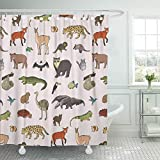 Emvency Shower Curtain Set Waterproof Adjustable Polyester Fabric Green American Animals of South America Pattern Ant Eater Battleship Bird Cavy 66 x 72 Inches Set with Hooks for Bathroom