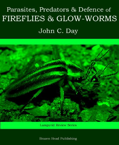 Parasites, Predators & Defence of Fireflies and Glow-worms (Lampyrid Review - 2 Predator Review