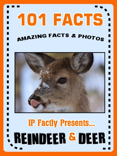 101 Facts... Reindeer & Deer! Reindeer Books for Kids. (101 Animal Facts Book 16) (Reindeer Facts Christmas)