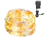 Best Rope Light For Seasonal Decoratives - LED String Lights Silver Wire Lights, Leadpo Waterproof Review