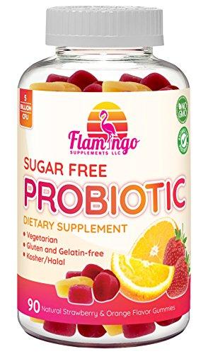 Flamingo Supplements - Sugar Free Probiotic Gummies - 5 Billion CFU, Non GMO, Vegetarian (NO Gelatin or Gluten) and Kosher. For Women Men & Kids Digestive and Immune Health | 90 Count by Flamingo Supplements