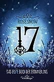 17, Das erste Buch der Erinnerung (Die Bücher der Erinnerung, Band 1)