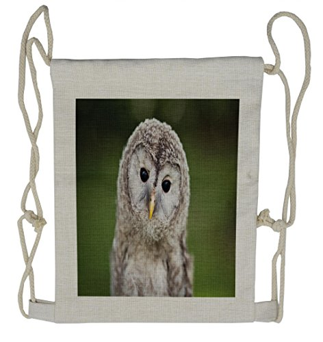 - Lunarable Cute Drawstring Backpack, Tawny Owl in a Green Forest, Sackpack Bag