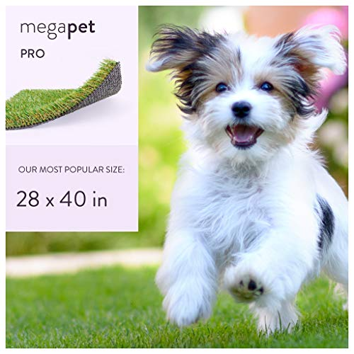 MEGAGRASS Popular Size 28 x 40 Inches Pet Pro - Indoor and Outdoor Artificial Grass Patch for Dogs and Fake Puppy Potty Training Pee Pads, 8 Square Ft ()