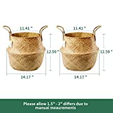 POTEY 720303 Seagrass Plant Basket - Hand Woven