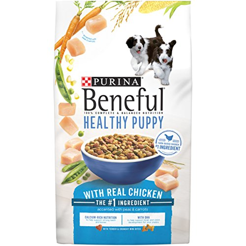 Purina Beneful Healthy Puppy With Real Chicken Dry Dog Food - 15.5 lb. (Purina Dog Beneful Healthy)