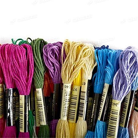 Aplogize Hilo de Bordar Kit de Hilo de Bordar Algod/ón Multicolor 100 Colores