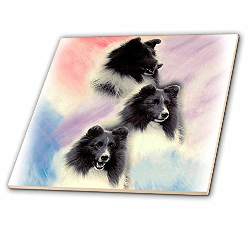 3dRose LLC Black Sheltie 6-Inch Ceramic (Sheltie Porcelain)