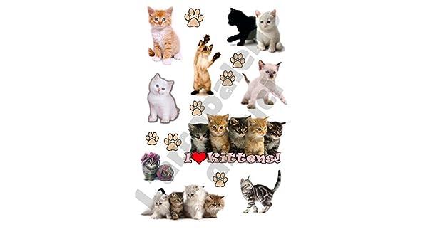 AWS 9 Stickers Gatitos Gatos I Love Gatitos Cachorros Pegatinas Impermeables Sugar Cat Cats Gato Wipe Micio Pegatinas para para Coche o Moto Paws Vinilo ...