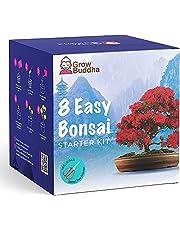 Bonsai Tree Kit | Kweek Je eigen 8 Prachtige Bonsai Boomsoorten thuis| Complete Kweekset - Geschikt voor Beginners tot Experts - Kweek Binnen Planten - Gedenkwaardig Geschenk voor Vrouwen, Mannen en Kinderen