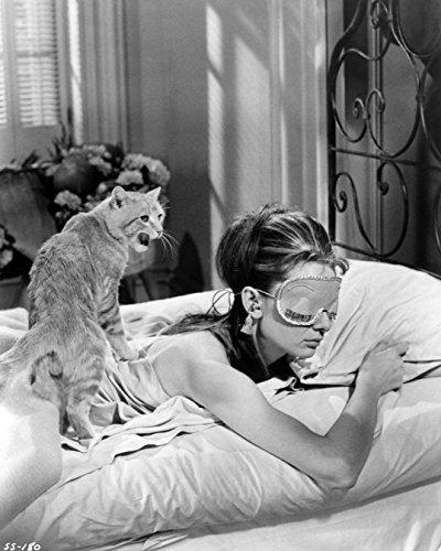 Audrey Hepburn with Cat 1961