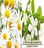 CHAMOMILE NEROLI Essential Oil & Fragrance Oil Blend - Sophisticated blend - By Oakland Gardens