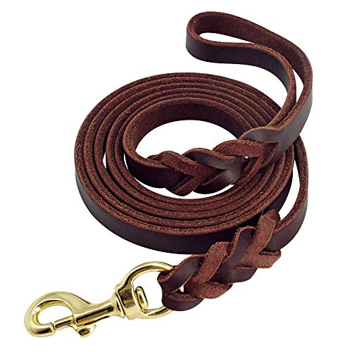 Beirui Leather Dog Leash - Training & Walking Braided Dog Leash - 6.5 ft by 5/8 in (205cm 1.6cm) - Latigo Leather Brown