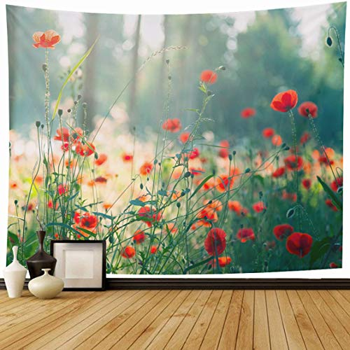 Ahawoso Tapestry Wall Hanging 80x60 Flower Red Poppies Forest Morning Nature Trees Parks Field Summer Poppy Tree Excursions Design Home Decor Tapestries Decorative Bedroom Living Room Dorm