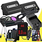 TWO NPFH50 Lithium Ion Replacement Batteries w/Charger + 8GB SDHC Memory Card + Mini HDMI + 3 Piece Filter Kit + Tripod + USB SD Memory Card Reader /Wallet + Deluxe Starter Kit for Sony DCRDVD508, DCRDVD408, DCRDVD308, DCRDVD108, DCRDVD505, DCRDVD405, DCR