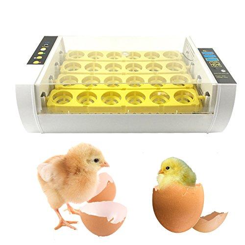 24 Digital Clear Egg Incubator Hatcher Automatic Turning Egg Incubator 60W Digital Temperature Control by cheerfullus