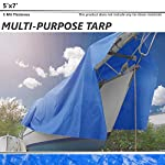 Tarp Any Size 5 mil 10 mil 16 mil Multi-Purpose Waterproof Reinforced Rip-Stop Grommets, UV Resistant Tarpaulin Canopy Tent, Boat, RV Pool Cover, Blue, White, Brown, Silver