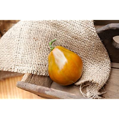 Japanese Trifele Truffle Black Heirloom Tomato Premium Seed Packet + More : Vegetable Plants : Garden & Outdoor