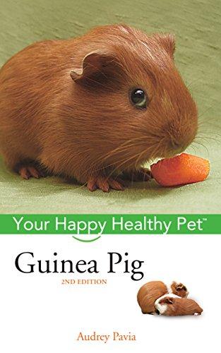 Guinea Pig: Your Happy Healthy Pet ()