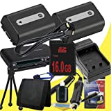 TWO NPFH50 Lithium Ion Replacement Batteries w/Charger + 16GB SDHC Memory Card + Mini HDMI + USB SD Memory Card Reader /Wallet + Deluxe Starter Kit for Sony DCRDVD508, DCRDVD408, DCRDVD308, DCRDVD108, DCRDVD505, DCRDVD405, DCRDVD305, DCRDVD205, DCRDVD105,