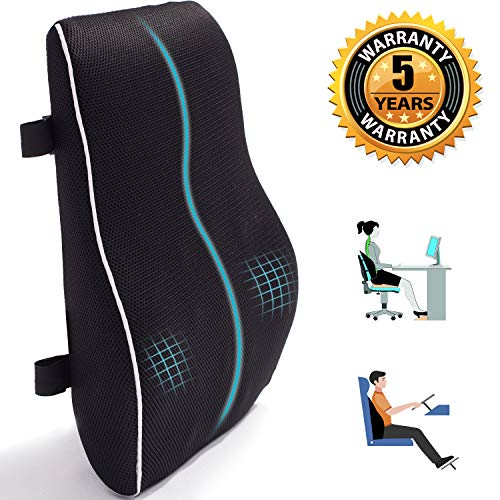 Lumbar Support for Office Chair Memory Foam Back Cushion for Back Pain Relief Improve Posture - Large Back Pillow for Car, Computer Chair, Recliner Breathable 3D Mesh Cover Double Adjustable Straps