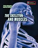 The Skeleton and Muscles, Louise Spilsbury, 1432909150