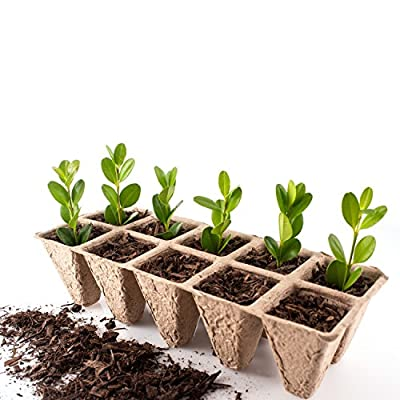 Germination Peat Pot Seedling Starter Trays - (100 Cell Pack) - Bonus 30 Plant Markers -greenfingers Biodegradable & Organic Seed Germination Kit - Perfect for Indoor, Windowsill, Classroom, Garden