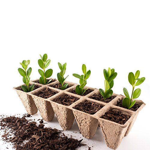 - Seed Starter Trays | Pack of 10 X 10 Cell Germination Peat Pots | Bonus 30 Plant Markers | Biodegradable Seedling Pots for Plants | Organic Plant Starter Trays | Seedling Trays
