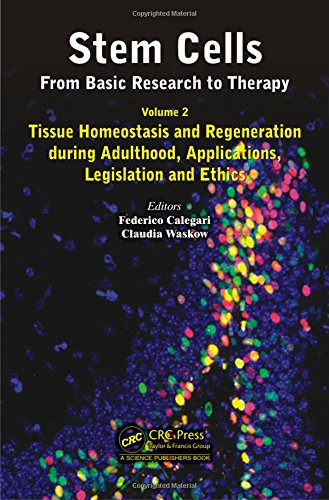 2  Stem Cells  From Basic Research To Therapy  Volume Two  Tissue Homeostasis And Regeneration During Adulthood  Applications  Legislation And Ethics